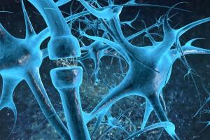 neuropathic1